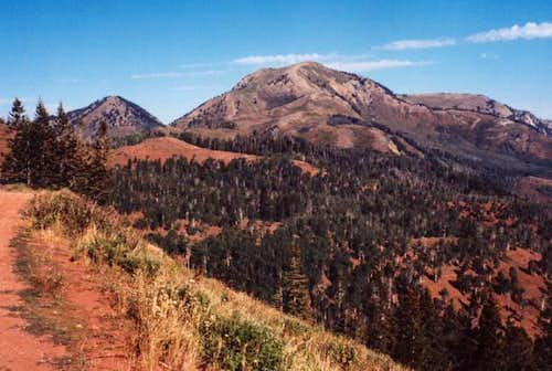 Bald Mountain from near the...