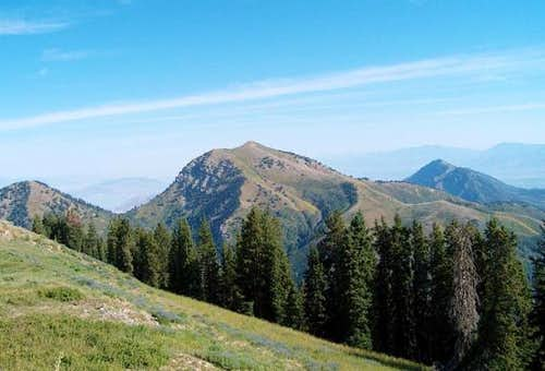 Bald Mountain (Wasatch)