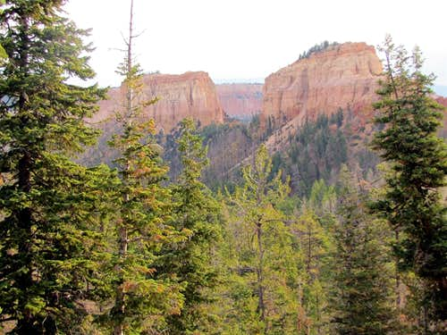 Mud Canyon & Swamp Canyon Buttes