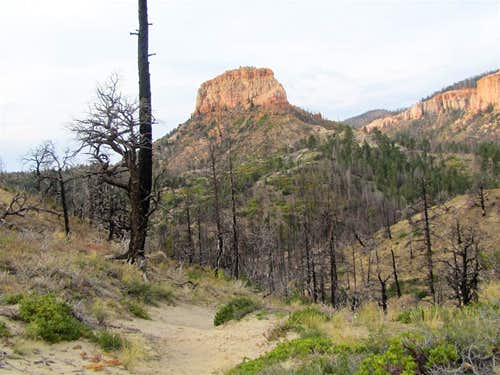 Swamp Canyon Butte
