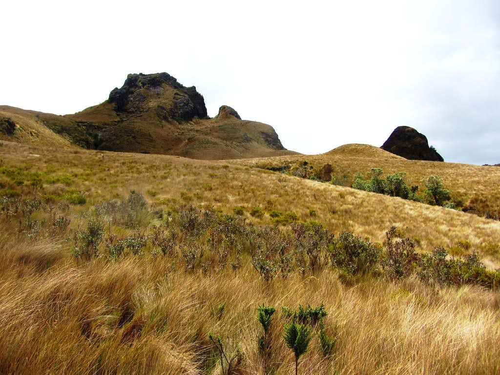 slopes of Pasochoa