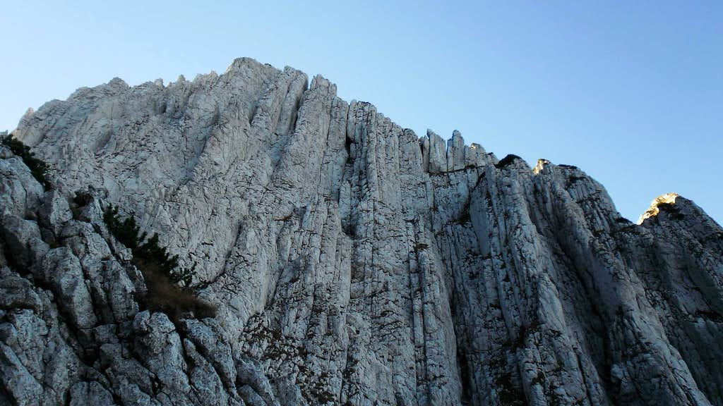 Side ridge of Timbal seen from Padina lui Calinet