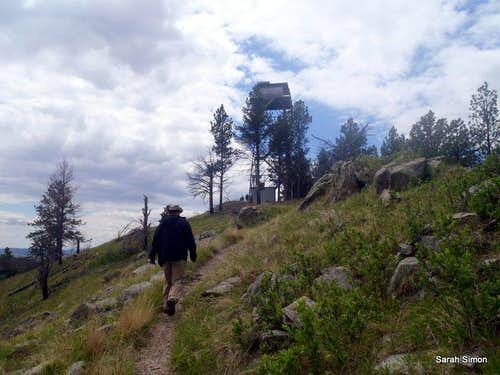 Nearing the summit fire tower