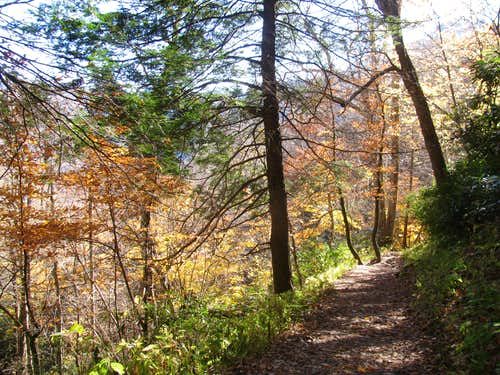 Autumn Colors on the Chimney Tops Trail