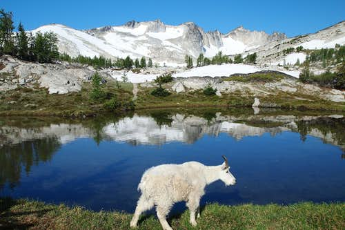 goat and Dragontail Peak