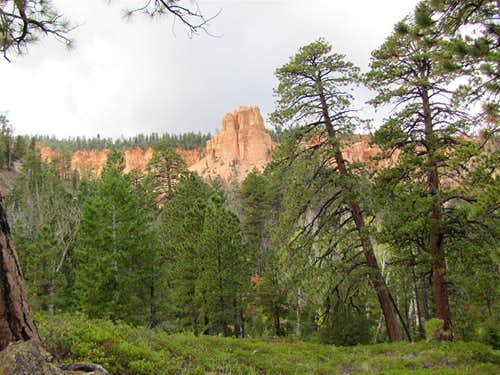 South Fork of Ponderosa Canyon
