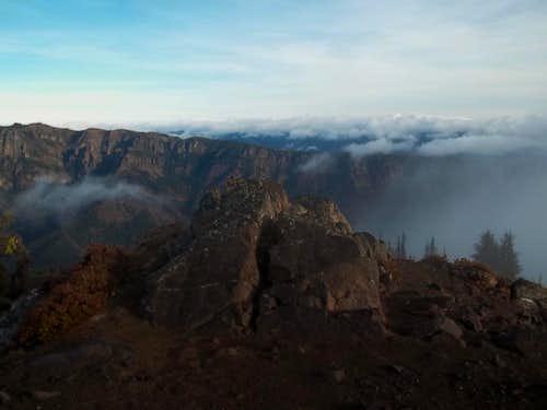 Western Larch Mania Near Mount Rainier