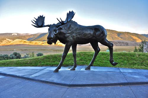 National Museum of Wildlife Art, Jackson Hole