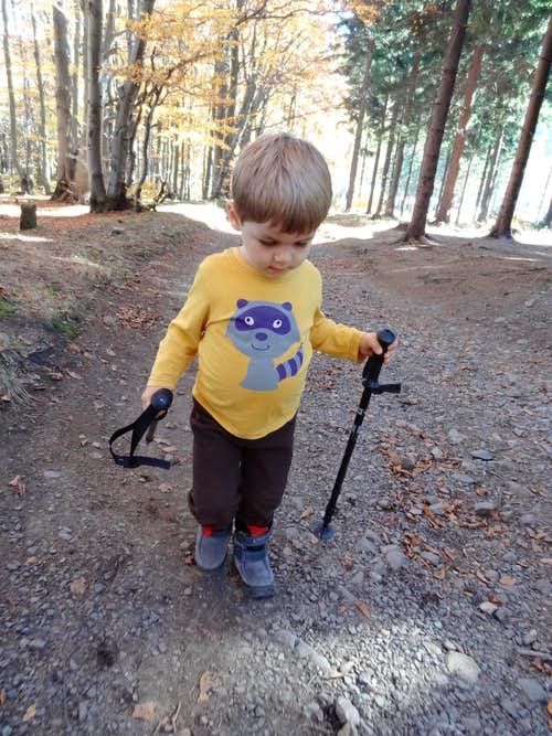 Dad, give me all hiking sticks.