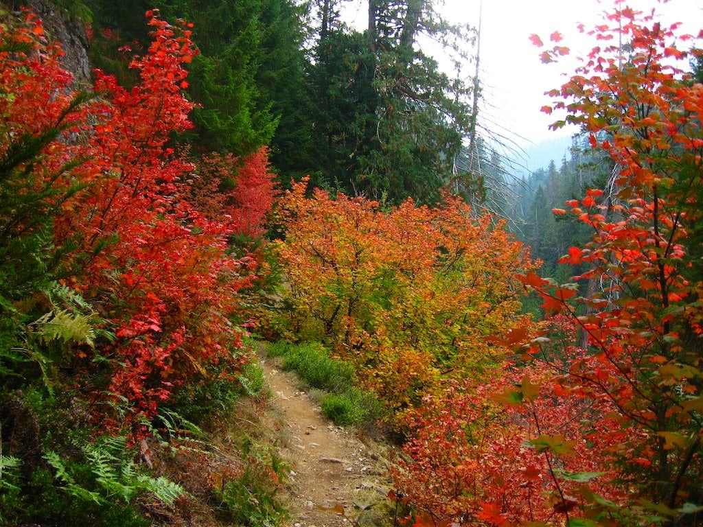 Thunder Creek Trail