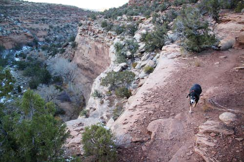 Trail along the rim of a canyon