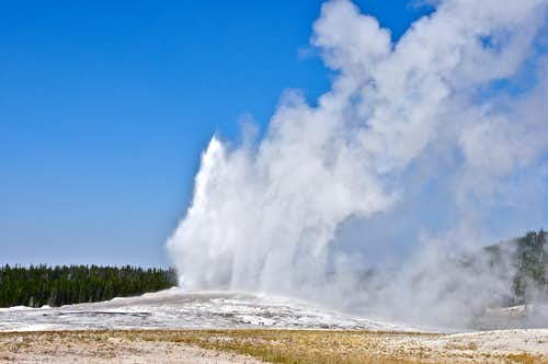 Yellowstone National Park, 2012