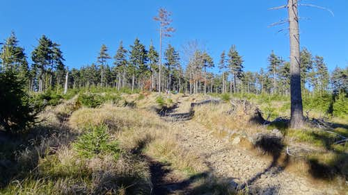 The trail to the summit, from Kozie Siodło pass