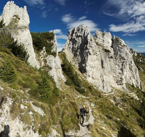 Limestone towers
