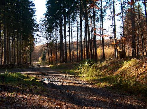 Autumn in the Strzelin hills