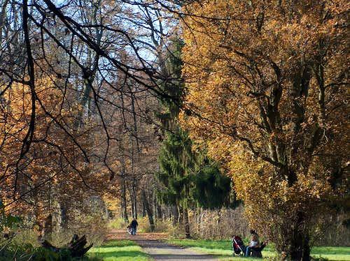 Henryków park in autumn