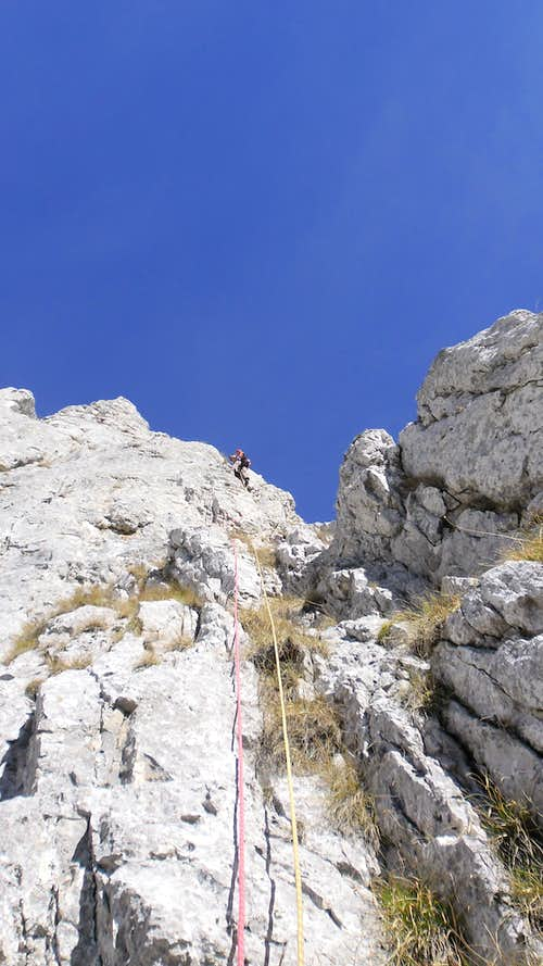 Andrei leading to the first pitch on Black Rose