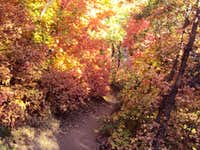 Pretty Fall Hiking