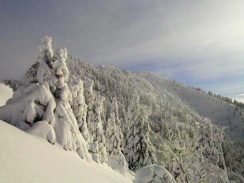 On the NW ridge of Struska...