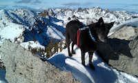 Marley Atop Granite Peak with Middle Peak and Gibson Peak beyond