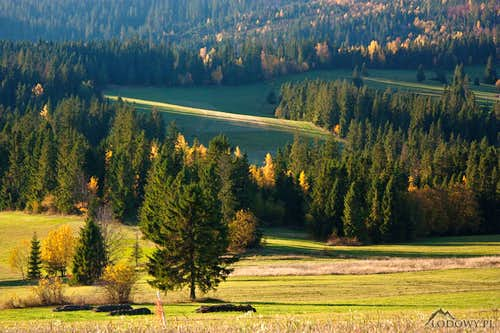 Lapszanka meadows in morning sun