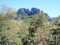 Seneca Rocks Behind Forest