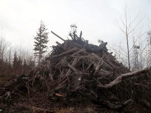 Manmade Log Pile