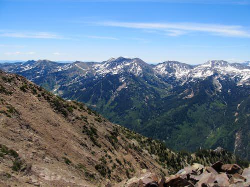AF Twin Peaks