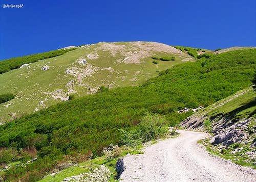 Summit area of bulky Alancic...