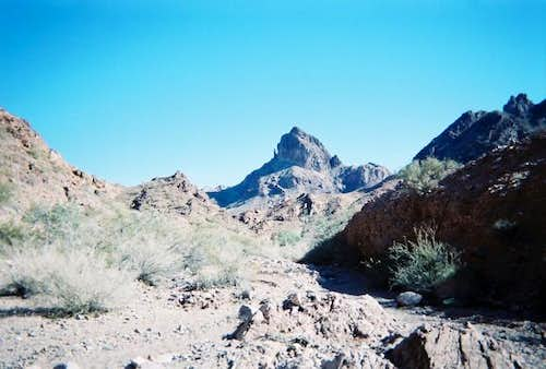 A view of Castle Dome Peak as...