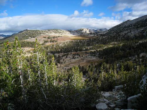 Meadows on Bear Ridge