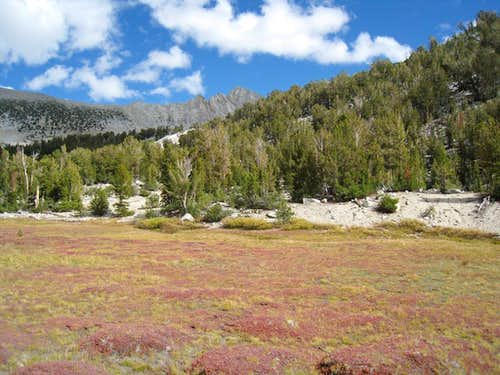 Meadow below Recess Peak