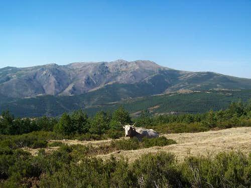 From L to R: La Cebosa, Cerro...