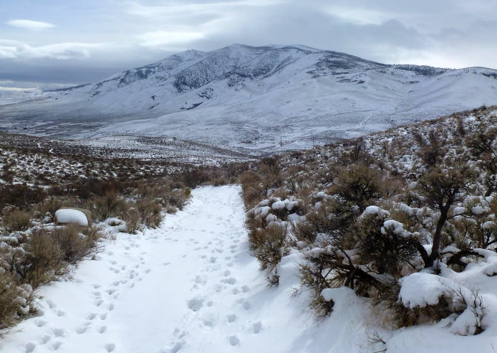 View towards Peavine Peak while descending from the Granite Hills