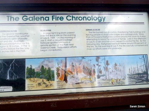 About the Galena Fire