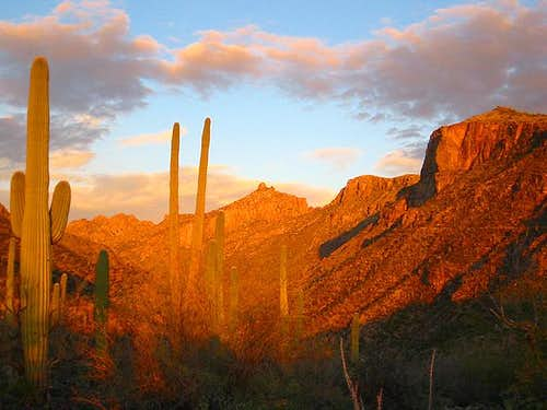Sunset on the walls of Sabino Canyon