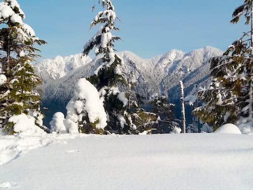 View through the snow