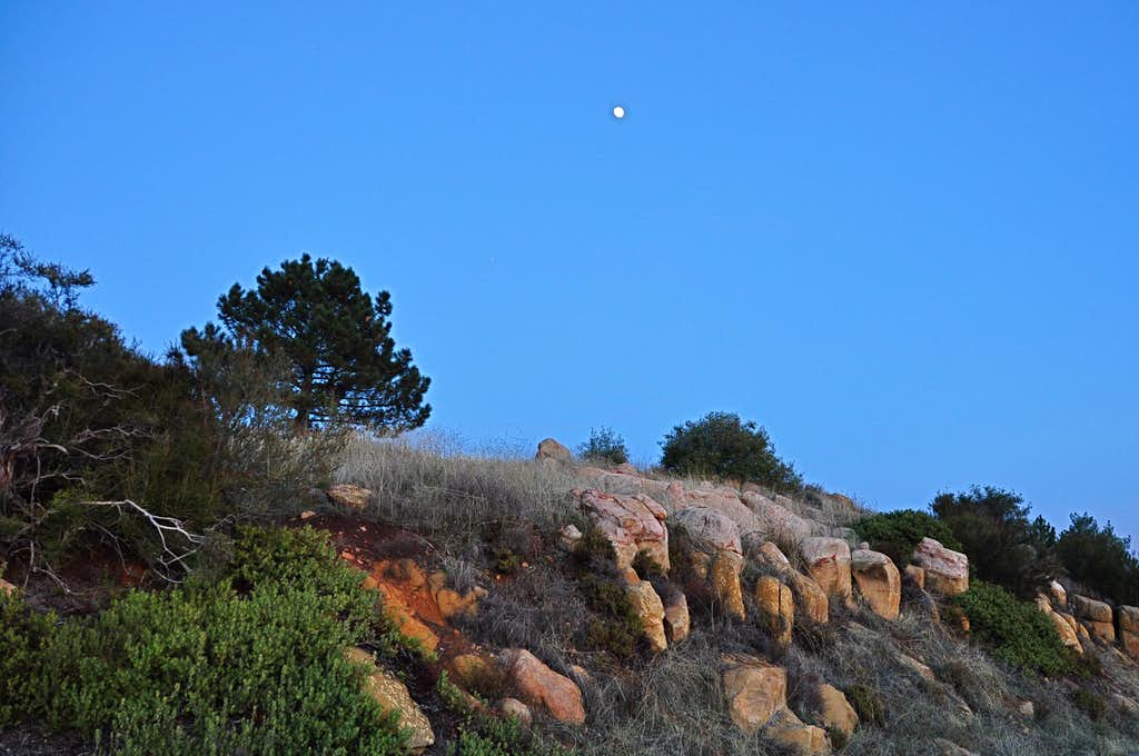 Along Camino Cielo Ridge