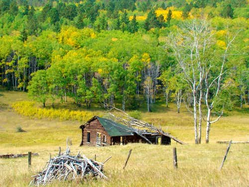 Old abandoned cabin by Custer Peak