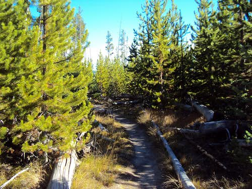 Lower trail near Trailhead