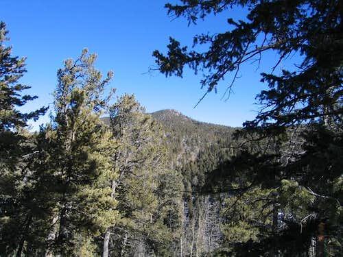 Upper Fourmile Road Trailhead