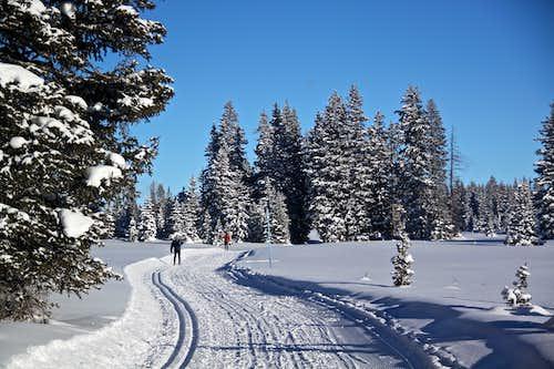 x-country skiing at Grand Mesa