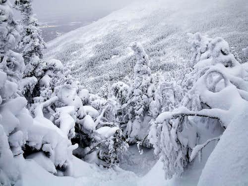 Snowy Wright Peak