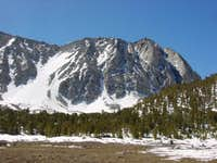 Wheeler Peak from near...