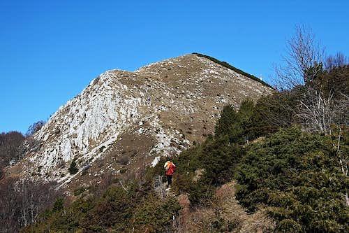 On the south ridge of Ucka