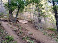 The trail gets steep in spots