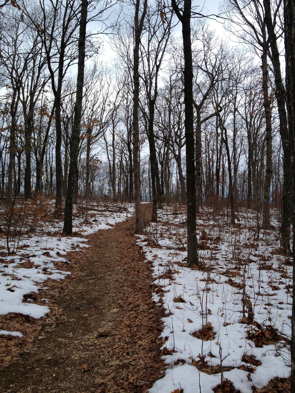 January hike in Mount Magazine