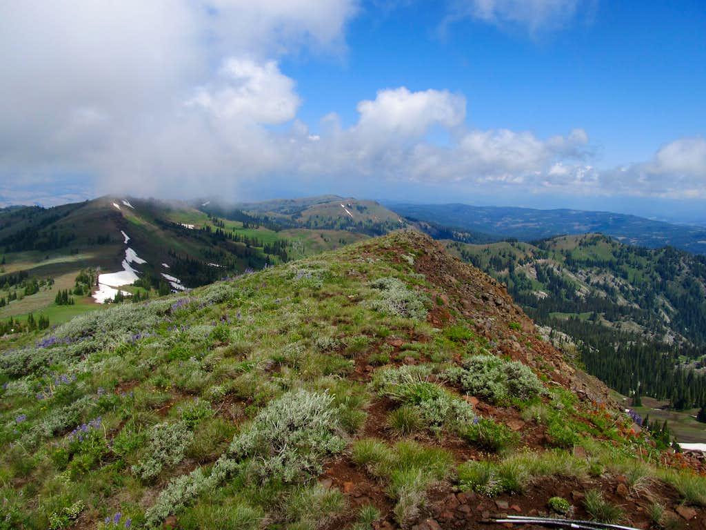 NE-ish from summit