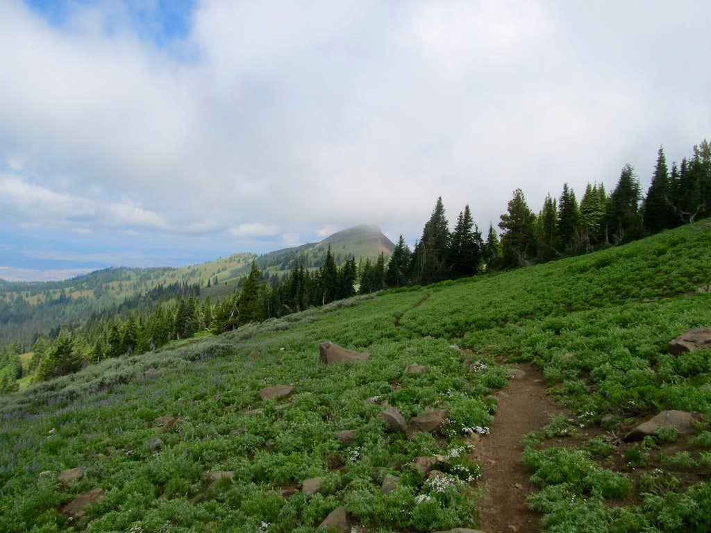returning via the trail
