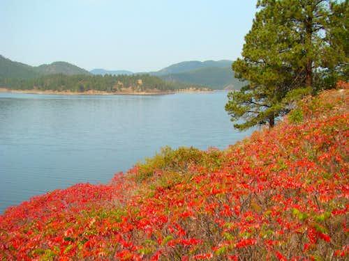 Fall colors at Pactola Lake